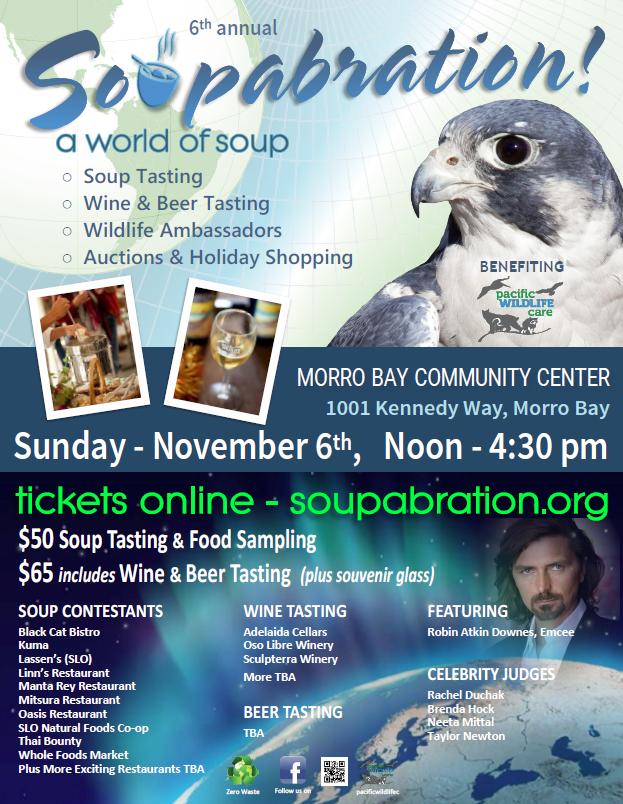 2016 Soupabration Flyer