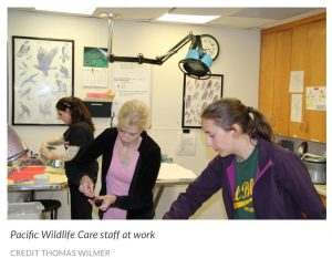 pacific wildlife care staff photo