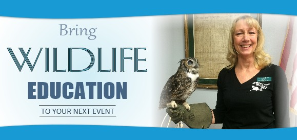 Wildlife Education Banner