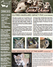 Spring Second Chance Newsletter 2018