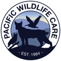 Pacific Wildlife Care